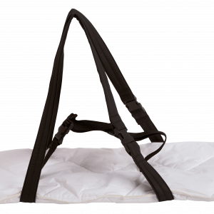 Carrying-board_PNG